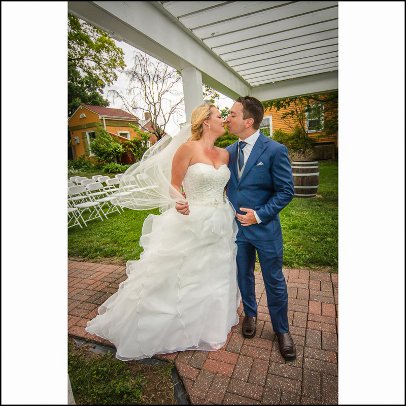 Link to Greater St Louis area Wedding Photographers gallery: Lindsey and Zach